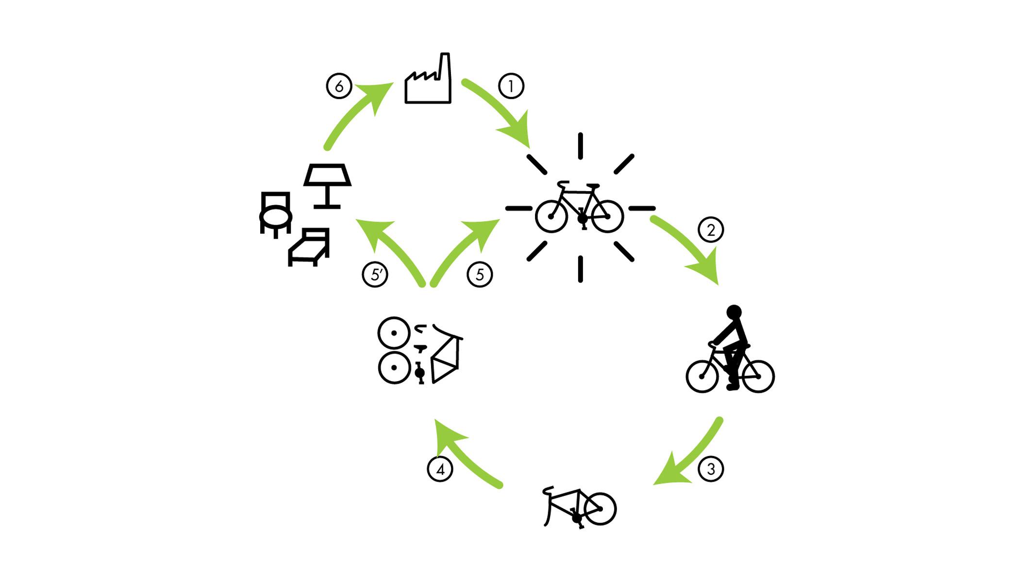 Redivivus - Cycle de vie produit
